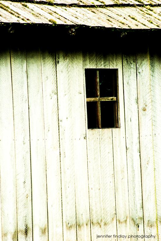 WINDOW copy