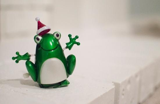 christmas frog_72dpi